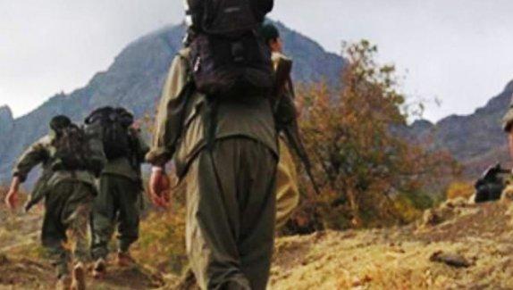 Örgütten kaçan 8 PKK'lı Şırnak'ta güvenlik güçlerine teslim oldu.