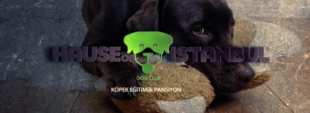 Köpek Oteli Gaziosmanpaşa