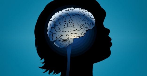 Otizm Eğitim Merkezi Hakkında Bilgi