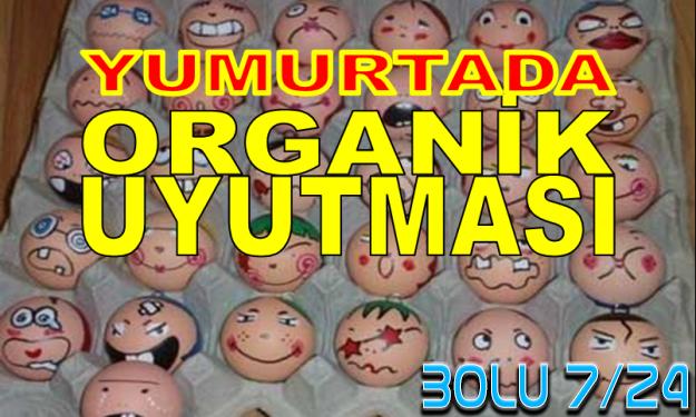AMAN DİKKAT: Organik Yumurta Diye Tavuk Pisliği Satıyorlar