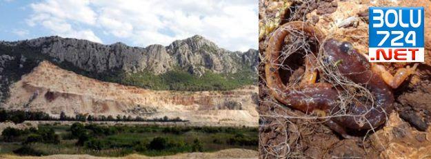 Antalya Semender'ri Taş Ocakları Yüzünden Yok Oldu