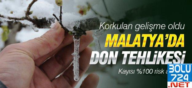 DON: Kar Kayısı'yı Vurdu,Don Üretimi Azaltacak!!