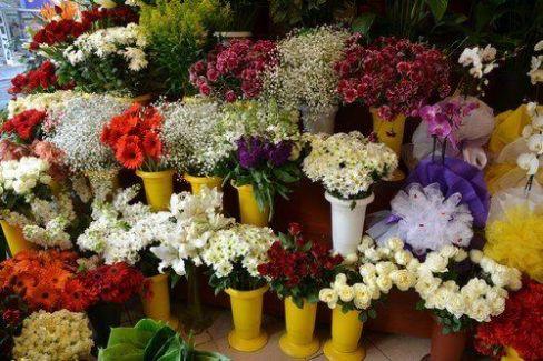 Fuar İçin Özel Çiçek Seçenekleri
