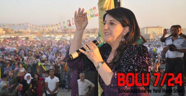 HDP'li Pervin'den Efkan Ala'ya Sert Demeç: BARİKAT KURAMAZSINIZ