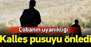 Çoban Uyardı PKK Katliamı Engellendi!