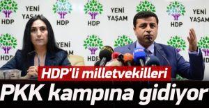 HDP'li Grup PKK'ya Gidiyor!