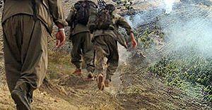 PKK 6 Bin 400 Kase Yoğurt Çaldı
