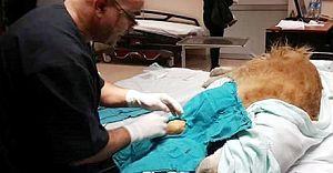 Ereğli'de Köpeğe Tıbbi Müdahalede Bulunan Doktora Soruşturma