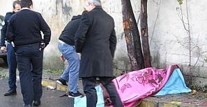 Kaldırımda Yürüyen Karı Kocaya Minibüs Çarptı