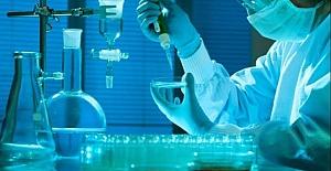 DNA Testi Sonuçlarını Anlama