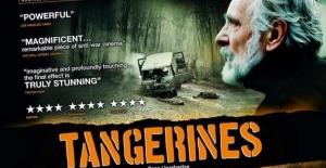 Online Yerli Film İzleme Sitesi