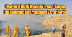 Mardin'nin Derik İlçesin Yanıyor. 10 Hektarlık Alan Yangından Zarar Gördü