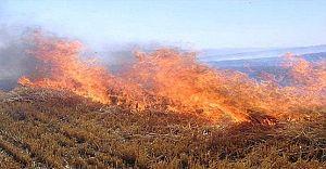 Büyükşehir Belediyesi Anız Yangını Konusunda UYARDI!