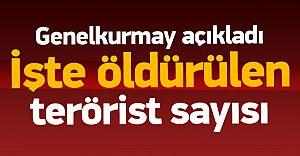Tam 440 Terörist Öldürüldü! İşte Yeni Rakamlar PKK'nın Ağır Kaybı!