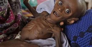 Birleşmiş Milletler Verisine Göre Açlık Yüzünden 124 Milyon İnsan Ölmek Üzere