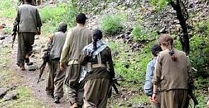 Şırnak'ta 10 PKK Üyesi Teslim Oldu