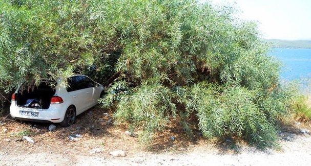 Ağaç Can Kurtarır Hayat Verir! 25 Metrelik Uçurumdan Düşmesini Ağaç Önledi