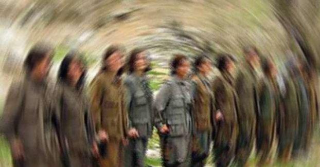 Şırnak'ta 7 PKK/KCK'lı Teslim Oldu