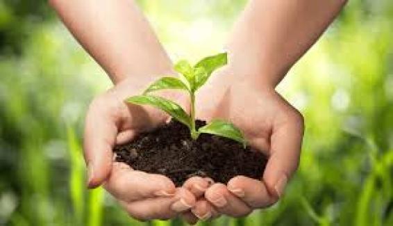 Organik Ürün Belgelendirme Hizmeti