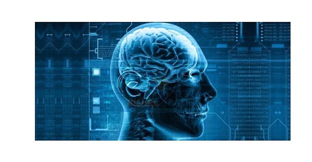 Beyin Yeni Bir Yapay Zeka Türüne İlham Veriyor