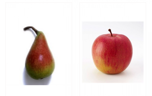 Tüplü Meyve Fidanı