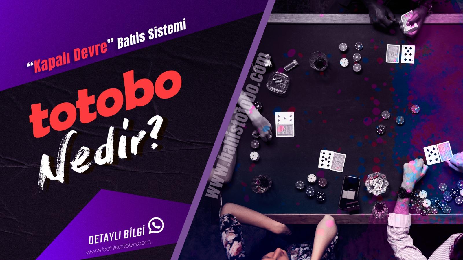 Totobo'yu ne kadar tanıyorsunuz ?