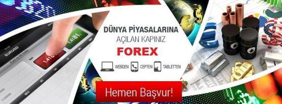 Forex Nedir? Nasıl Oynanır ve Demo Hesabı Nasıl İndirilir? Forex'ten Nasıl Para Kazanırım? Ekonomi Haberleri