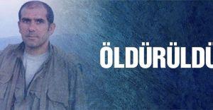 PKK Üst Düzey Yöneticisi Öldürüldü