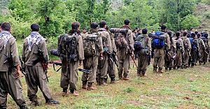 İşte PKK'nın 5 Maddelik Dev Planı!