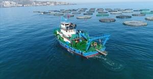 Trabzon'dan 8 Ayda 676,8 Milyon Dolarlık İhracat Yapıldı