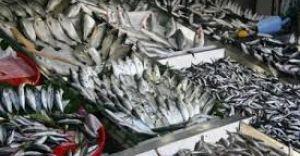 İto Açıkladı,İstanbul'da Mayıs'ta Fiyatı Artan Ürün Balık Oldu