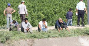 Yüreğir'de 22 Yaşındaki Suriyeli Genç Kanala Düşerek Boğuldu